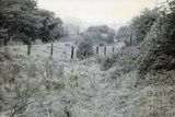 Canal bed between Radford and Dunkerton c.1950s