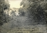 Track formation from Combe Hay tunnel towards the village 1961