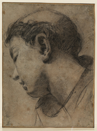 Head of a young monk