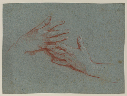 Study of female hands