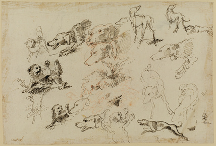 Study of dogs (recto)