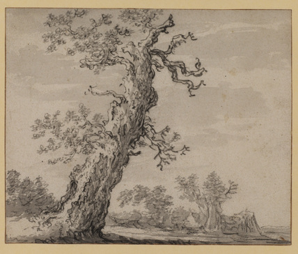 Landscape with oak tree