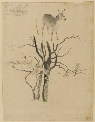 Studies of a donkey and a group of trees