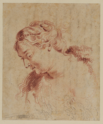 Female head and some trees (head after Rubens)