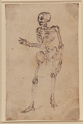 Skeleton of a man