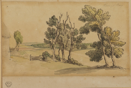 Landscape with tree and meadow