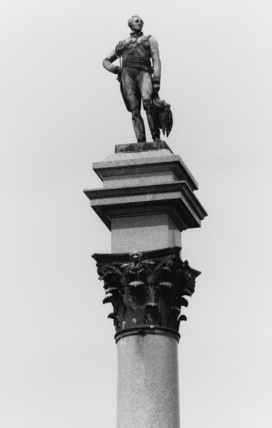 Duke of Wellington Commemorative Column