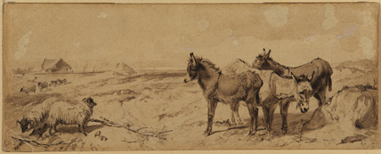 Landscape with sheep and donkeys