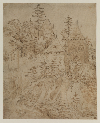Ruined castle on a cliff wooded with fir trees