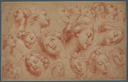 Study of heads
