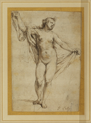 Female nude (study for Andromeda)