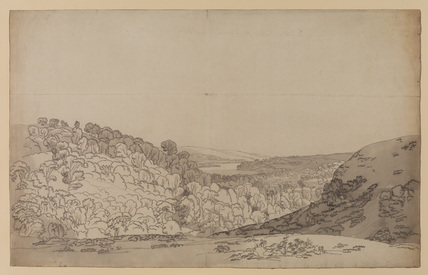 Extensive landscape with a wooded valley