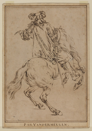 Horse and rider, seen from behind
