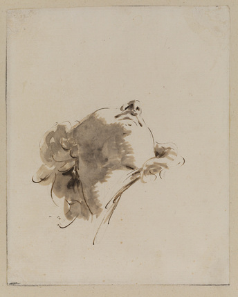 Head of an angel, foreshortened