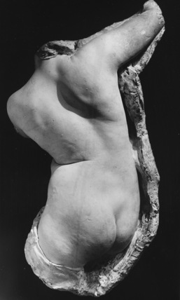 Cast of a female torso, from life