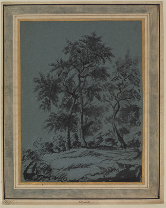 Study of three trees