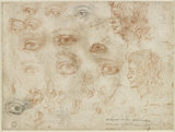 Verso: Various sketches of Eyes and Head profiles