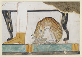 Copy of wall painting from private tomb 52 of Nakht, Thebes (I, 1, 99-102) cat eating fish