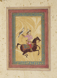 Man on horse with a hawk