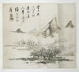 Landscape with a mountain and shrubs