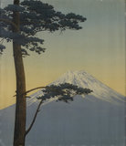 Pine tree and Mount Fuji
