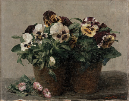 Pansies and Daisies