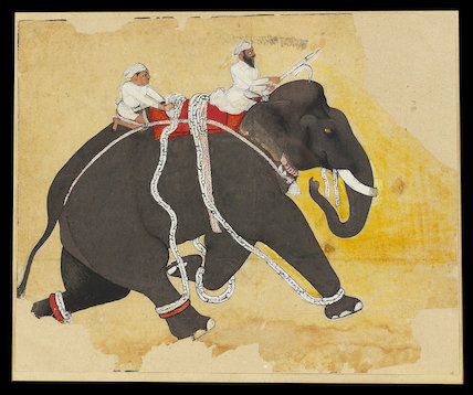 Elephant at a gallop