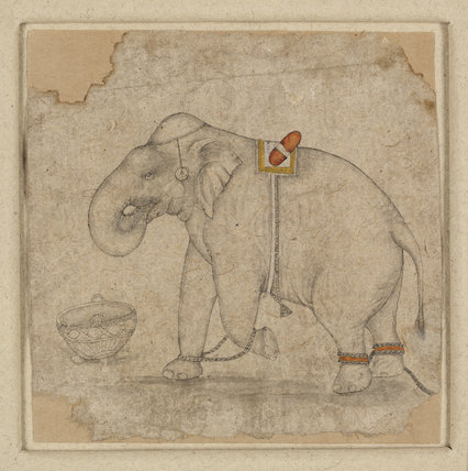 Small drawing of an elephant