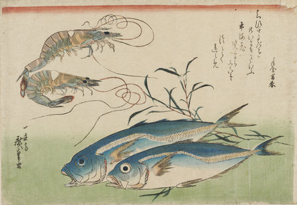 Woodblock print - Two fish & prawns & weeds