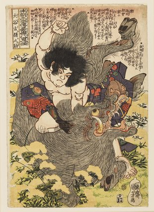Otani Koinosuke killing a wild boar with his hands.