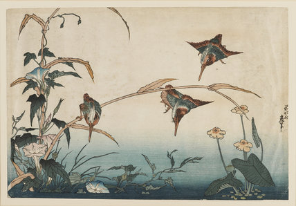 Kingfishers, Reeds, and Morning Glories