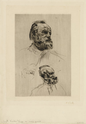 Victor Hugo in three-quarter view