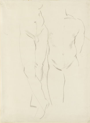Study of a male Torso and Legs