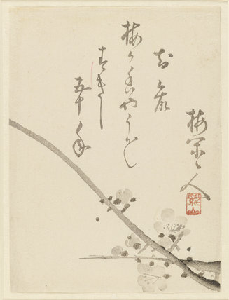 Branch of plum blossom