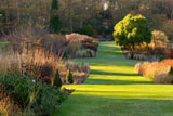 Winter light at Harlow Carr