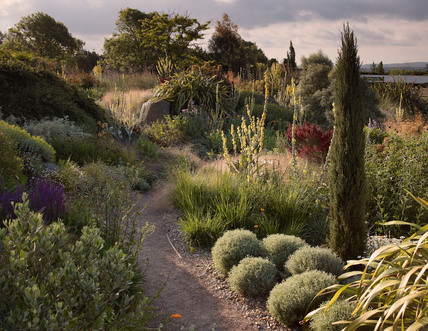 The Dry Garden By At Royal Horticultural Society