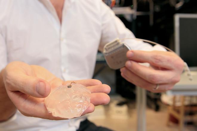 La mano de Grégoire Courtine sostiene el chip formado por los electrodos sobre un modelo de silicona del cerebro de un primate. ALAIN HERZOG / EPFL