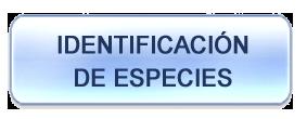 identificacion-de-especies
