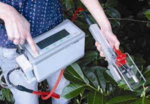 medidores-de-actividad-fotosintetica