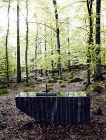 Stone sink in a wood