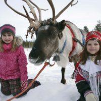 Reindeer race Luostolla  17.-19.3. 2017