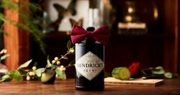 Hendrixk's Gin Delights