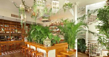 Escape to Another Time at Mr Fogg's House of Botanicals interior shot