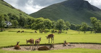 Isle of Arran golf