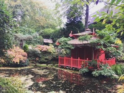 Luxury bournemouth japanese-garden