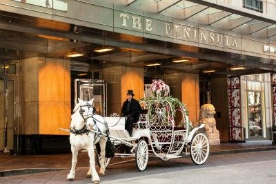 Peninsula Chicago horse and carriage