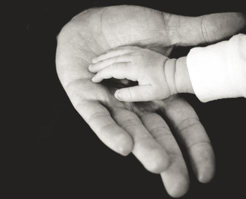 Elegimos a Nuestros Padres