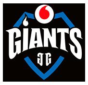 Vodafone Giants