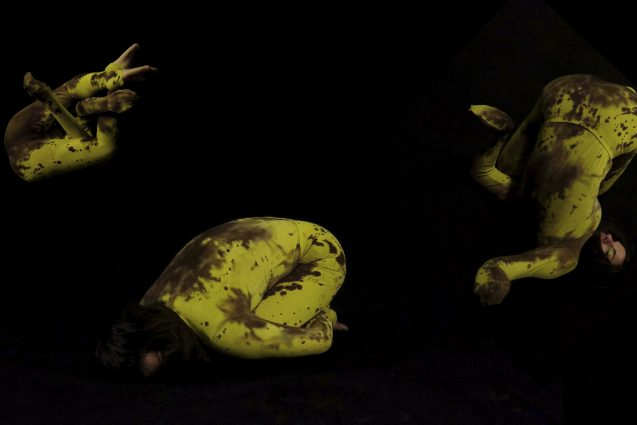 Collage,1 Valentina Karga (rajattu)