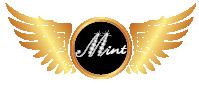 Mint Akademi - Kalıcı Makyaj Kursları - Kalıcı Makyaj Malzemeleri